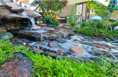 Pioneer Landscape Centers